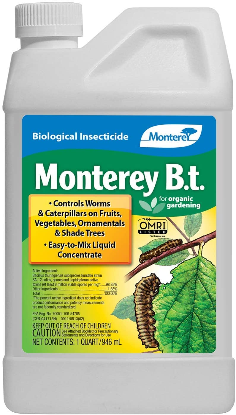 Best Insect Killers for Vegetable Garden